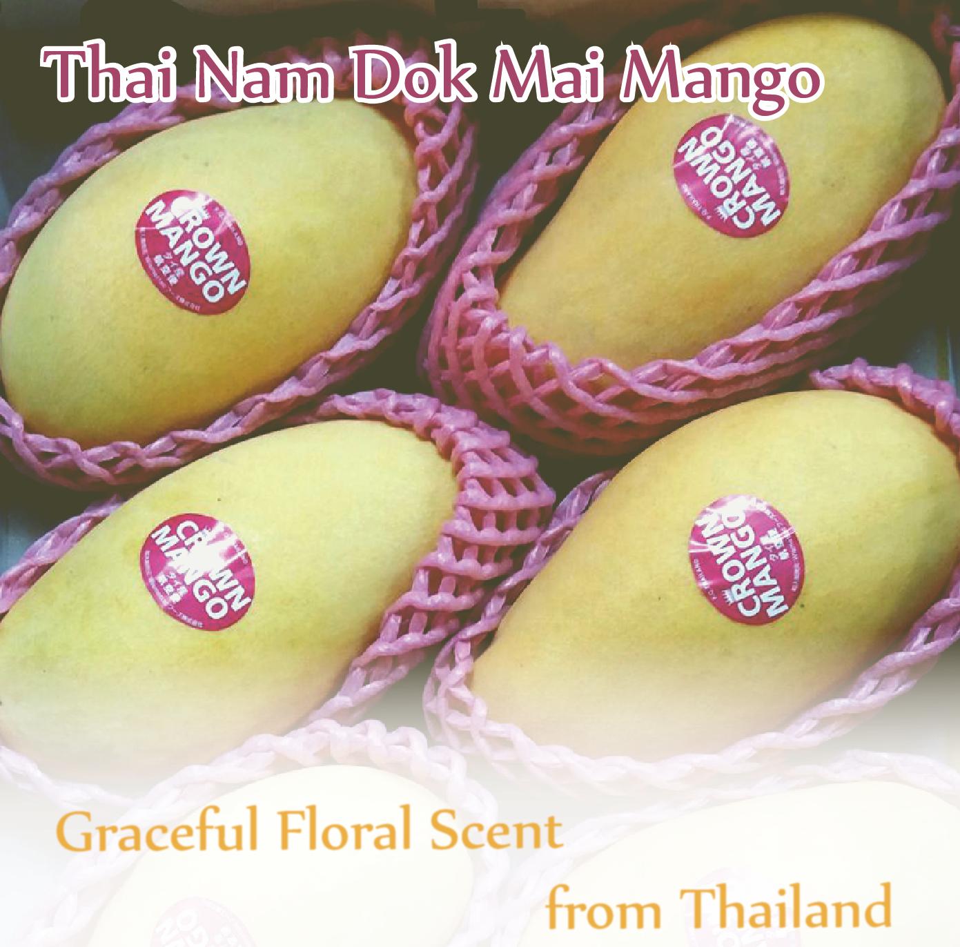 Thai Nam Dok Mai Mango