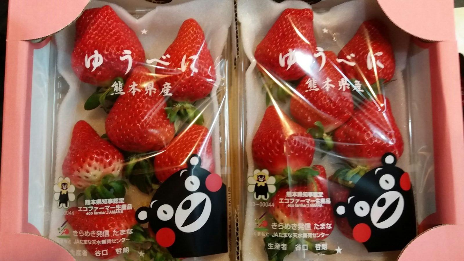Fukuoka Amaou Strawberry