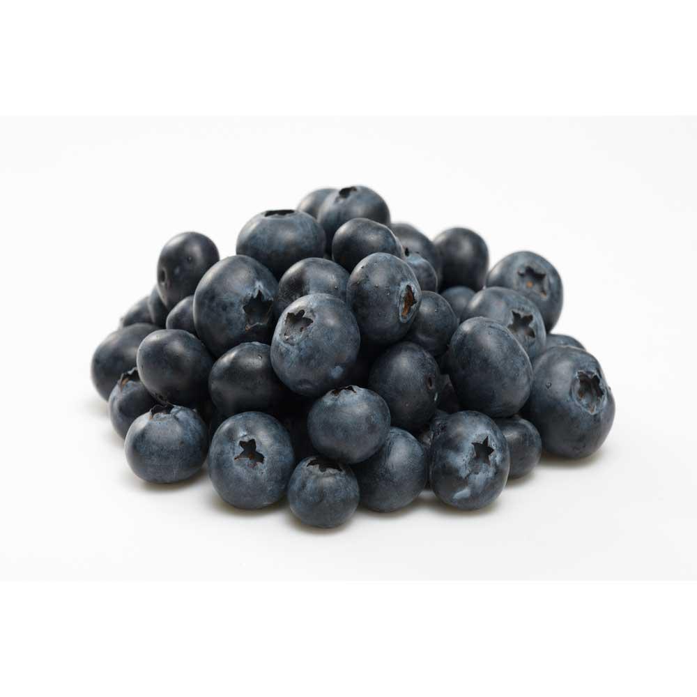 Australian Blueberry