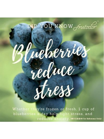 Chile Blueberries (Pack/125G)