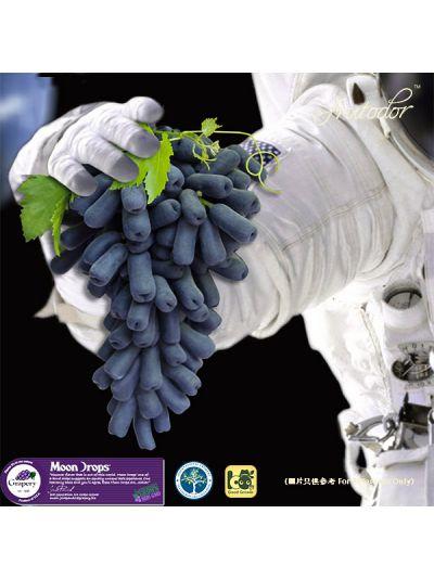 USA California  Moon Drops® Seedless Black Grapes (Box)(8Packs/19lbs)