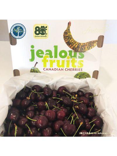 Canadian Jealous Fruits Cherry 10 Row 5KG