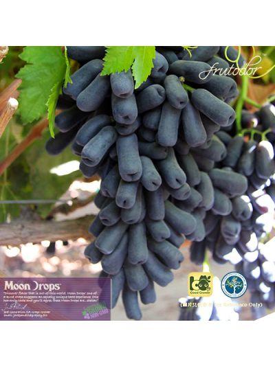 USA California Moon Drops® Seedless Black Grapes (2Pack/4.8lbs)